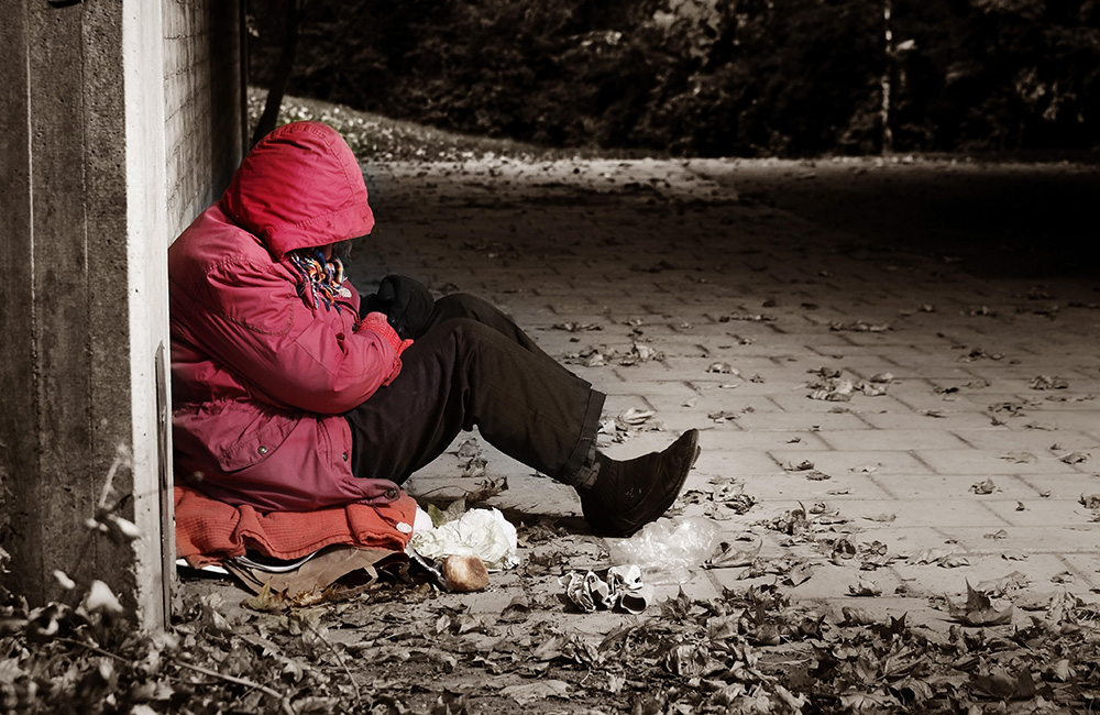 Roughsleeper image