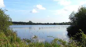 Sandwell Valley Country Park in West Bromwich